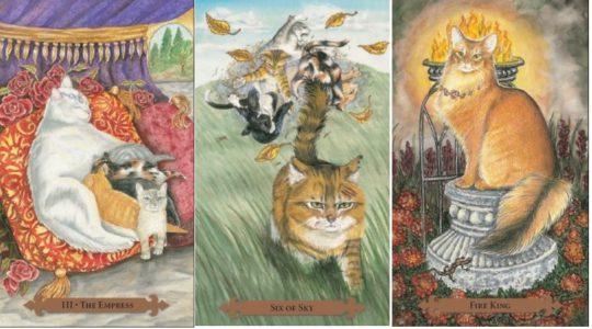 Kouzelný kočičí tarot